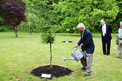 Faculty Tree Planting